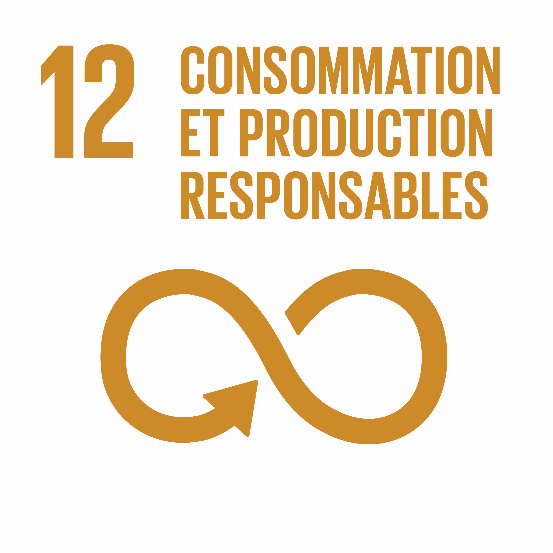 Consommation et production responsables - Objectif 12