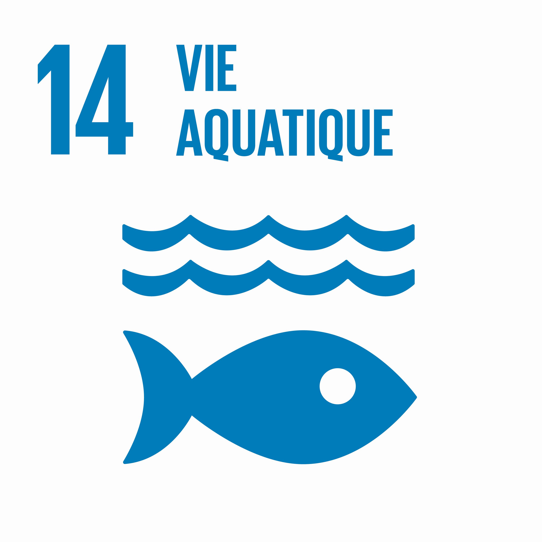 Vie aquatique - Objectif 14