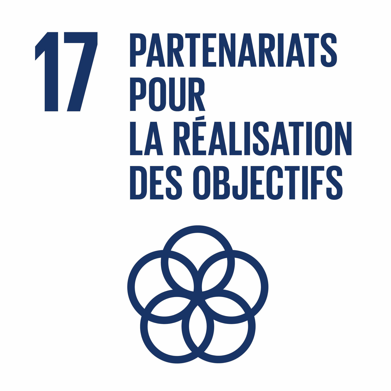 Partenariats pour la réalisation des objectifs - Objectif 17