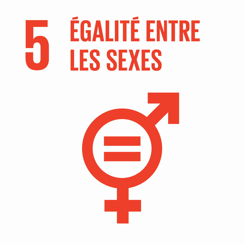 Égalité entre les sexes - Objectif 5