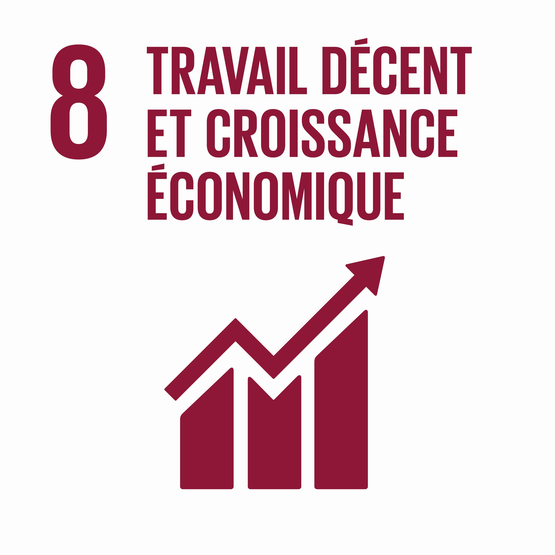 Travaux décent et croissance économique - Objectif 8
